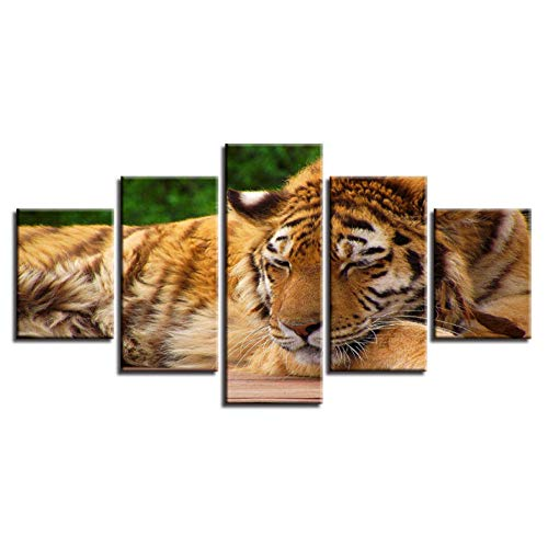PrintWUHUA Cuadros Lienzos Decorativos Animal Gentle Tiger Sleeping Poster Cuadros Abstractos Modernos...