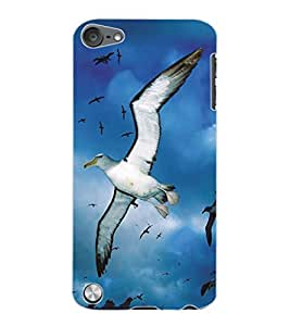 ColourCraft Flying Birds Design Back Case Cover for APPLE IPOD TOUCH 5