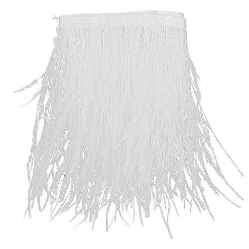 Plumas De Avestruz Tenidas Franja 1 Yard Recorte Blanco