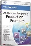 Video2Brain Adobe Creative Suite 3 Production Premium - Video-Training (2 DVD)