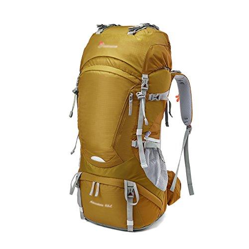 HWLXBB Borsa per alpinismo all'aperto Uomini e donne 65L Borsa per alpinismo multifunzione impermeabile Escursioni alpinismo Zaino per il tempo libero all'alpinismo zaino ( Colore : 1* ) 1*