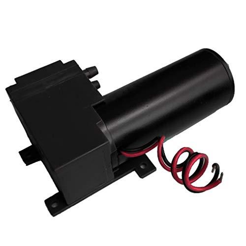 perfk Profi Wasserpumpe Druckerhöhungspumpe Selbstansaugende Pumpe, Hoher Unterdruck Leicht und Korrosionsbeständig - 24W12N20R29B
