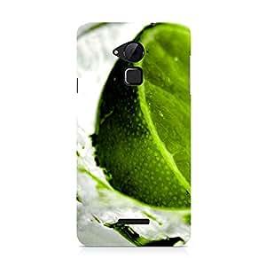Hamee Designer Printed Hard Back Case Cover for Coolpad Note 3 Design 4634
