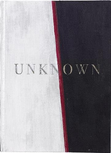 Unknown : Tome 2