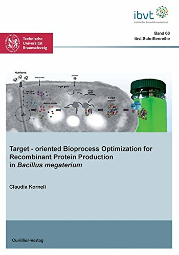 Target - oriented Bioprocess Optimization for Recombinant Protein Production in Bacillus megaterium (Schriftenreihe des Institutes für Bioverfahrenstechnik der Technischen Universität Braunschweig)