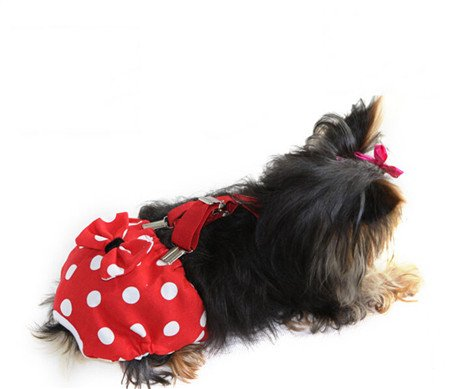 Malayas®Hunde Bekleidung Hose Hygieneunterhose weibliche Hund Sanitär Windel Physiologische Unterwäche für Hündin , Hunde Hosenträger 4 Größen XS S M L (Hund Sanitär-kleider)