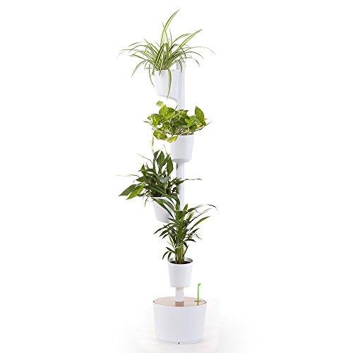 citysens - giardino verticale modulare con auto-irrigazione