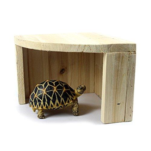 tianxun Reptile Versteck Schildkröte Versteck, Zedernholz Hütte