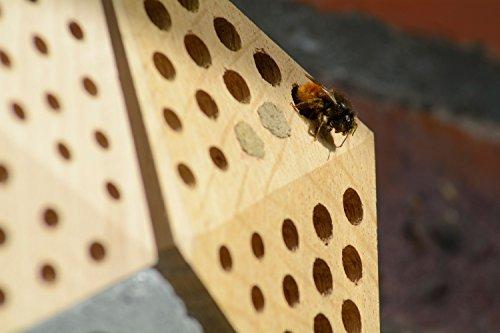 """Luxus-Insektenhotels 22660e Design-Insektenhotel """"Quartier"""" 5 Module: Beton, Eiche, Esche, 2x Buche, Insektenhaus für Wildbienen, Maße je Block, circa 15.5 x 8.5 x 7.5 cm, braun und grau - 11"""