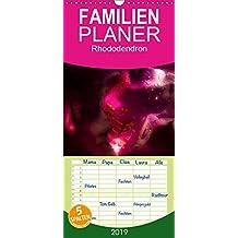 Rhododendron - Familienplaner hoch (Wandkalender 2019 , 21 cm x 45 cm, hoch): Rhododendronblüten im Licht (Monatskalender, 14 Seiten )