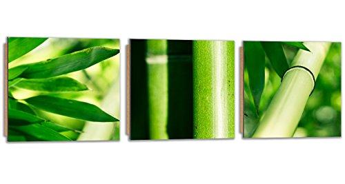 Bambus-panel (Feeby Frames, Wandbild - 3 Teile - Panoramabild, Deco Bild, gedrucktes Bild, Deco Panel, Foto, 90x30 cm, BLÄTTER, BAMBUS, NATUR, GRÜN)