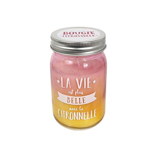 """Candle Factory Cmp - Candela in barattolo Mason Jar alla citronella, 260g, 40ore - con scritta """"La vie est plus belle"""""""