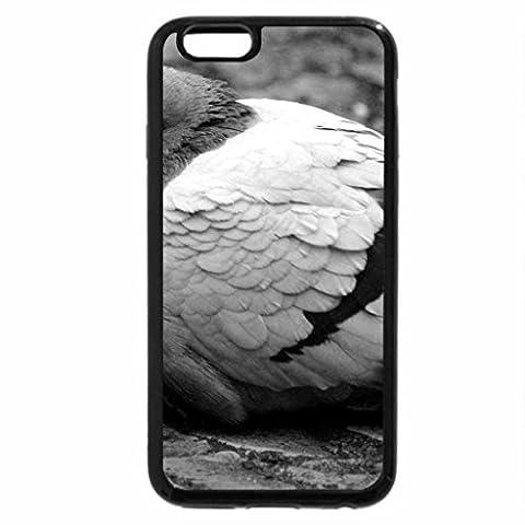 iPhone 6S Plus Case, iPhone 6 Plus Case (Black & White) - Fat Pigeon