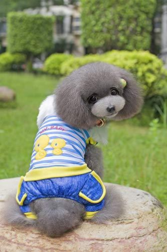 HUAIX petsuppliesmisc Haustier Kleidung Hund Kleidung Haustier Winterkleidung Teddy Hund Kostüme Huhn gestreiften vierbeinigen Baumwollmantel (Color : Blue, Size : L)