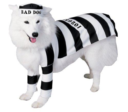 ween Classics Collection Pet Kostüm (Halloween Gefangener Kostüm)