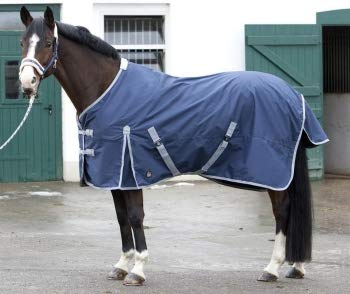 PFIFF 101671 Pferde Ganzjahres Decke, Weidedecke Pferdedecke Regendecke, Blau 145 cm