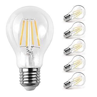 E27 LED Bulb, Ascher LED Classic E27 Cap Clear Filament Light Bulb, 6W (60W Incandescent Bulbs Equivalent), 800LM, Warm White 2700K, E27 LED Light Bulb, 5 Pack