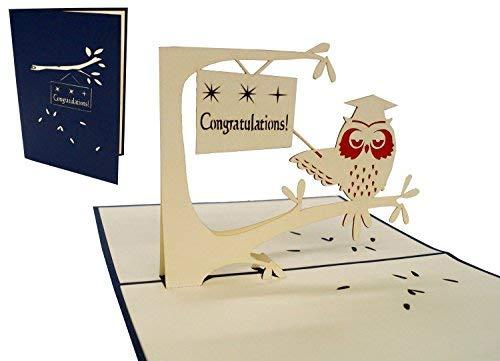 LIN-POP UP Grußkarten 3D Karten Glückwunschkarten zur bestandenen Prüfung, Eule mit Doktorhut (Engl.)