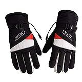 Die besten Thermische Handschuhe - Batteriebetriebene wiederaufladbare beheizte Handschuhe für Männer Frauen wasserdichte Bewertungen