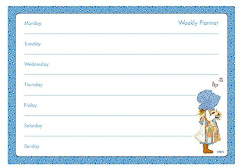 a4-weekly-planner-holly-hobbie-design-tear-off-planner-by-holly-hobbie