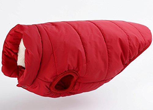 Winter Hund Kleidung Pet Kleidung Baumwolle gepolstert Jacke (Zwei Halloween Kostüme Schwestern)
