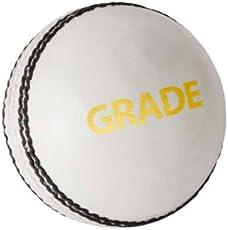 DSC Grade Leather Cricket Ball (White)