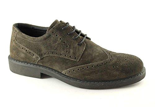 Igi&Co 47153 Antracite Chaussures de Sport Homme Pointe Élégante Anglais Marron