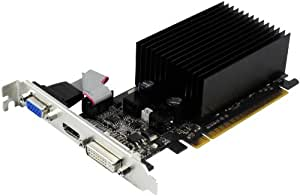 Palit GF210 Carte graphique Nvidia 1 Go DDR3 PCI-E HDMI, DVI