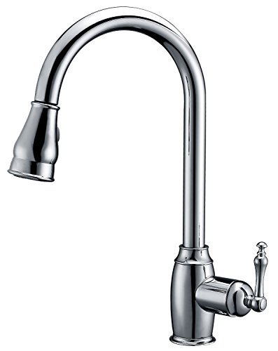Dyconn Faucet TB001-A03CHR Coronado Pull Down Dual Spray Single Handle Kitchen Faucet, Polished Chrome by Dyconn Faucet (Coronado Single)