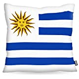 VOID Uruguay Polyester Kissenbezug Flagge Fahne Fan-Kissen Kissenhülle Outdoor Indoor Bunt, Kissen Größe:80 x 80 cm
