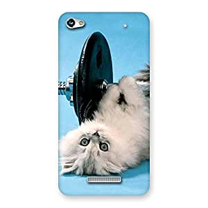 Stylish Fit Cat Multicolor Back Case Cover for Micromax Hue 2
