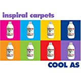 Songtexte von Inspiral Carpets - Cool As