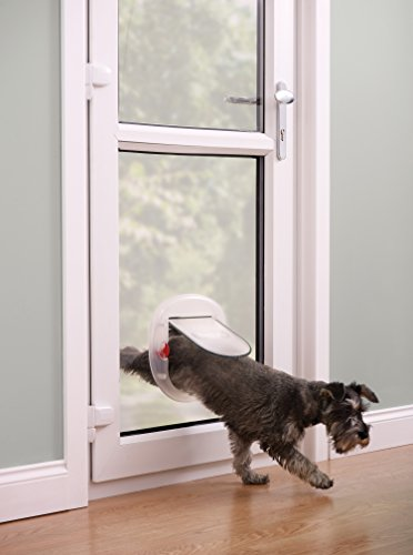 Staywell porta per cani di piccola taglia e gatti - Porta per gatti ...