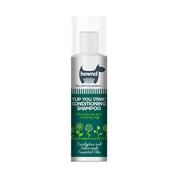 Hownd Yup You Stink! Conditioning Shampoo 250ml (PACK OF 4) 1