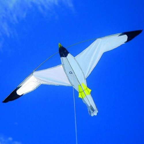 Price comparison product image Brookite Seagull Kite