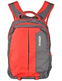 Friend Agencies Nylon 20 Liters Red & Grey School Backpack (FA001)
