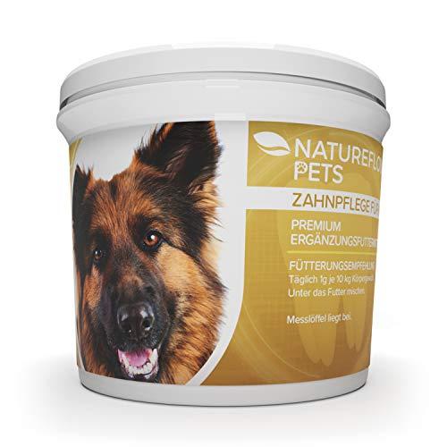 Zahnpflege für Hunde - Zahnsteinentferner Ergänzung gegen Mundgeruch bei Hunden - Natürliche und Wirksame Reinigung für Zähne & Zahnfleisch - Pulver 100g Premium Ergänzungsfuttermittel -