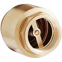 SaniFri 470010087 Valvola di ritegno in ottone, forma allungata, con molla, disco della valvola in ottone con guarnizione in gomma, PN25, dimensioni: 2 pollici