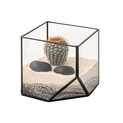 Ultra 10x10x10cm Cuadrado Vidrio Claro Terrario Plantador Forma Geométrica Para la Exhibición de Mesa Boda Pieza Central única o Ventanas Sills Las Plantas Aire Helecho Musgo Pequeño Jardín Interior