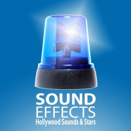 blaulicht sirene martinshorn polizei feuerwehr. Black Bedroom Furniture Sets. Home Design Ideas