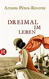 Dreimal im Leben: Roman (insel taschenbuch)