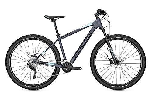 Focus Whistler 3.8 29R Sport Mountain Bike 2019 (XL/52cm, Grey)