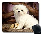 Gaming-Mauspad, Pet Friendly niedlichen Hund Kostenloser Download, Präzisionsnaht, langlebige Mauspad