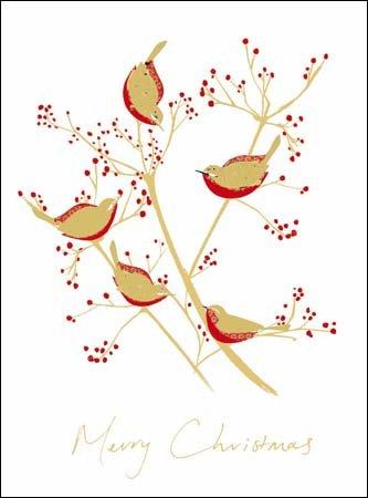 charity-christmas-cards-wdm4029-a-festive-feast-robins-in-aiuto-di-protezione-e-crisi-confezione-da-
