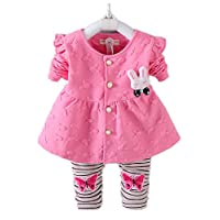Nine Minow Newborn Baby Girls Clothes Set Infant Girl Long Sleeve Coat+Pants 2pcs Set (Pink, 6-9 Months)