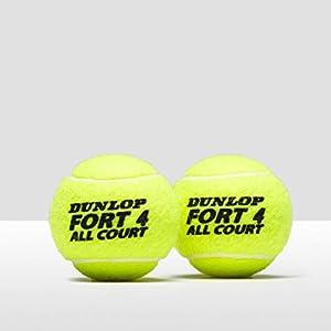 Dunlop Fort All Court Tennis Balls - 4 Ball Can Review 2018