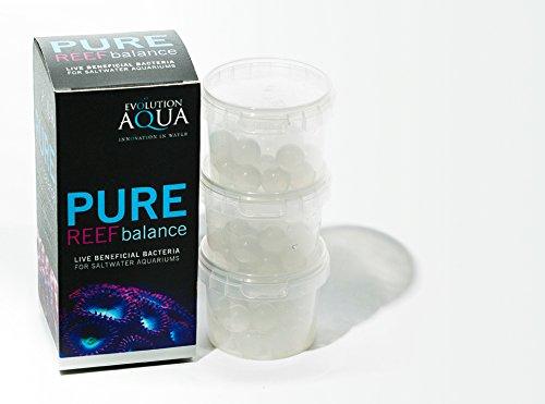 pure-reef-balance-60-balls-evolution-aqua