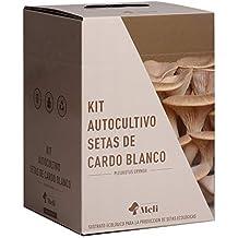 Kit Autocultivo Setas Ecológicas de Cardo Blanco