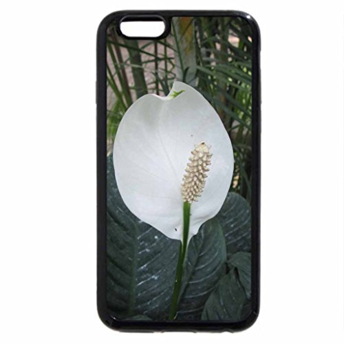 iPhone 6S Case, iPhone 6 Case (Black & White) - Scents of Spring 48