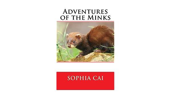 Adventures of the Minks